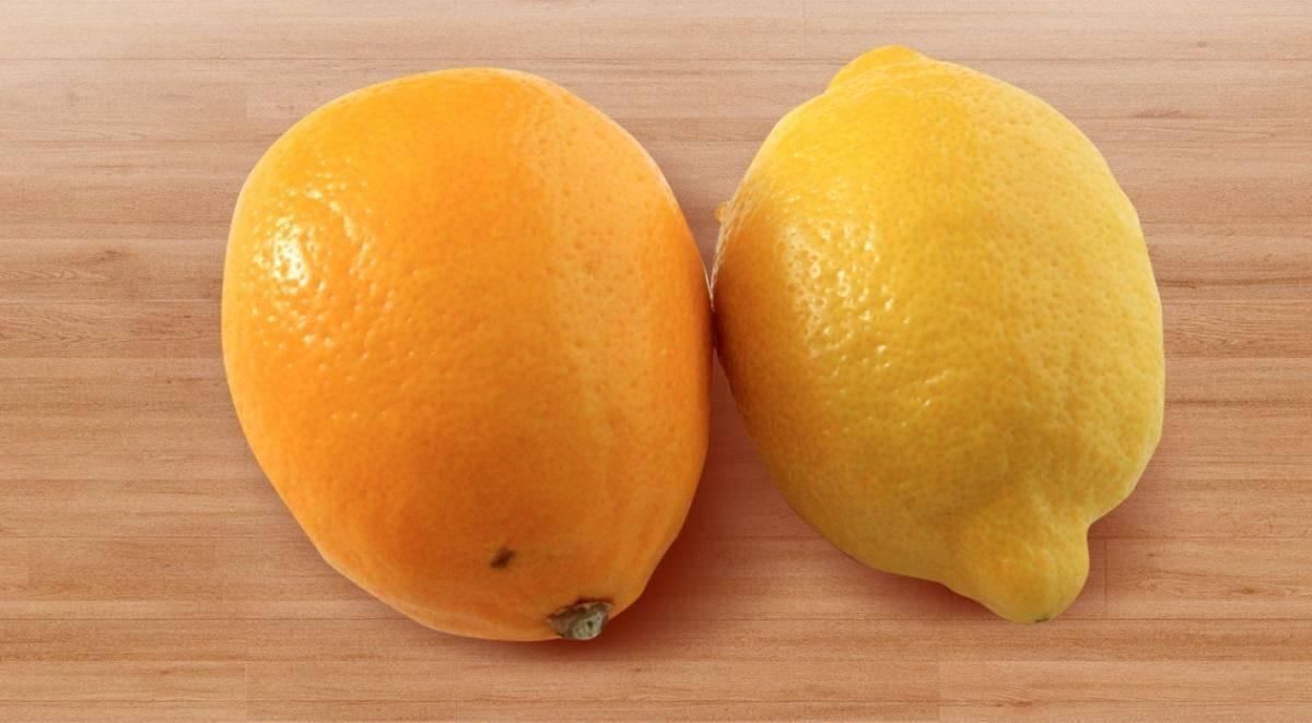 Лимон мейера: уход в домашних условиях и выращивание цитруса