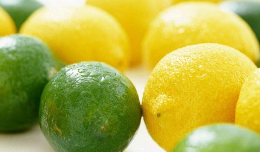 Лайм и лимон разные деревья. чем отличается лимон от лайма? как их отличить