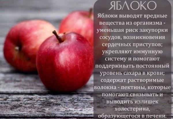 Зеленые яблоки — полезные свойства