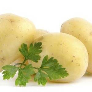 Скороспелый картофель метеор. характеристика сорта, агротехника и отзывы