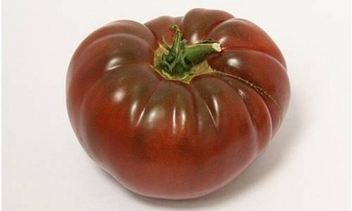 Как посадить и вырастить томат «маруся»