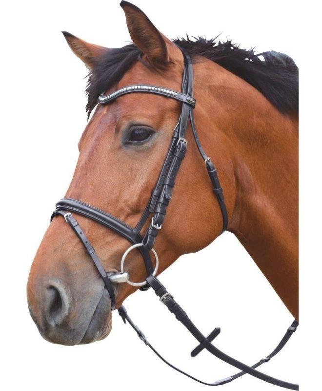 Как правильно сделать уздечку для лошади своими руками?