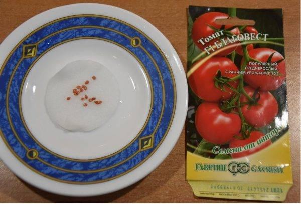 Сорта томатов: благовест f1: классика отечественного овощеводства