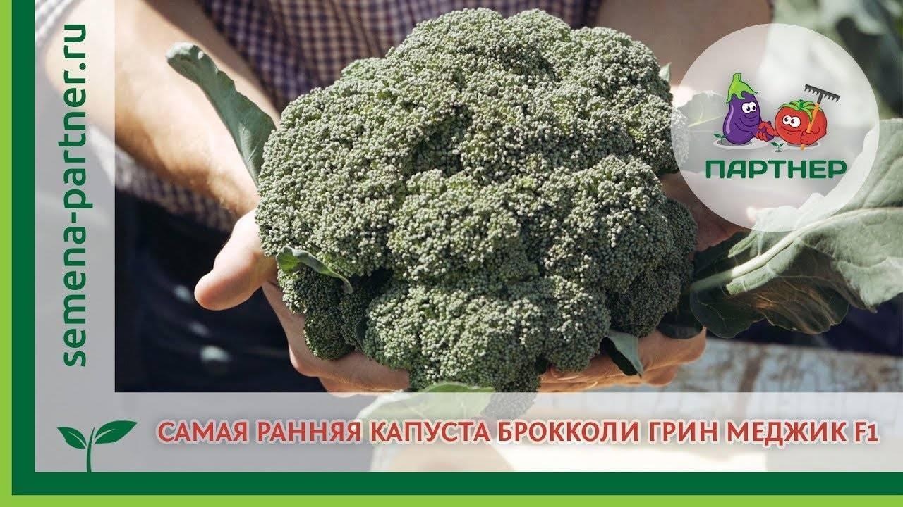 Семена капуста брокколи грин мэджик f1, престиж