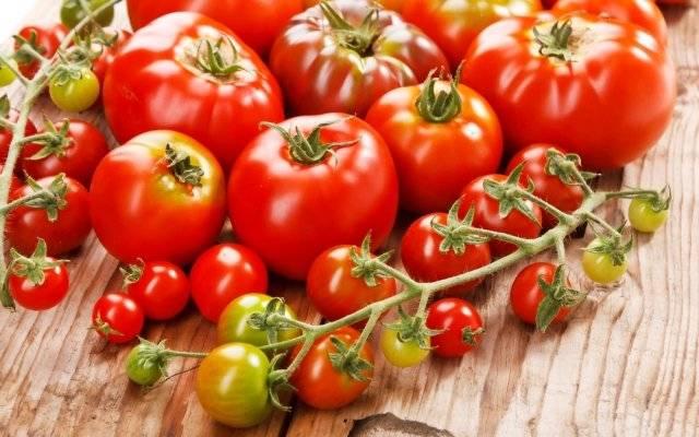 К чему снятся красные помидоры женщине — на кустах, есть и собирать