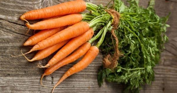 Как выращивать морковь с помощью яичных ячеек