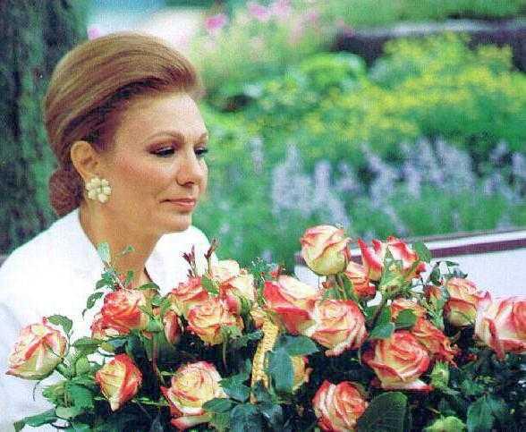 Описание розы императрица фарах
