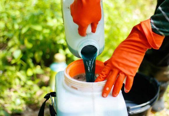 Бордосская жидкость — как сделать лучший фунгицид для растений