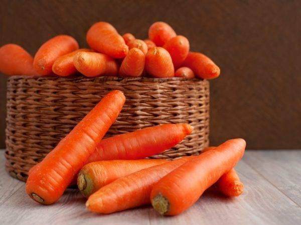 """Морковь балтимор f1 - описание сорта, фото, отзывы, посадка и уход - журнал """"совхозик"""""""