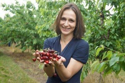 Посадка и уход за черешней в сибири, выбор сорта и ошибки при выращивании