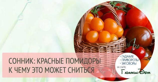 Приснились помидоры