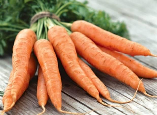 Самое важное о сочном источнике каротина — моркови каротель