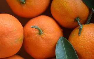 Апельсин это фрукт или ягода - ogorod.guru