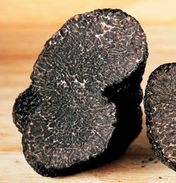Трюфель гриб – ароматное земляное сокровище - грибы собираем