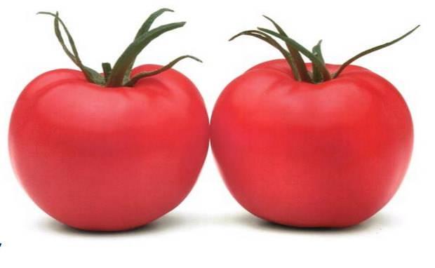 Томат «пинк парадайз» f1: характеристика сорта, отзывы, фото, его урожайность
