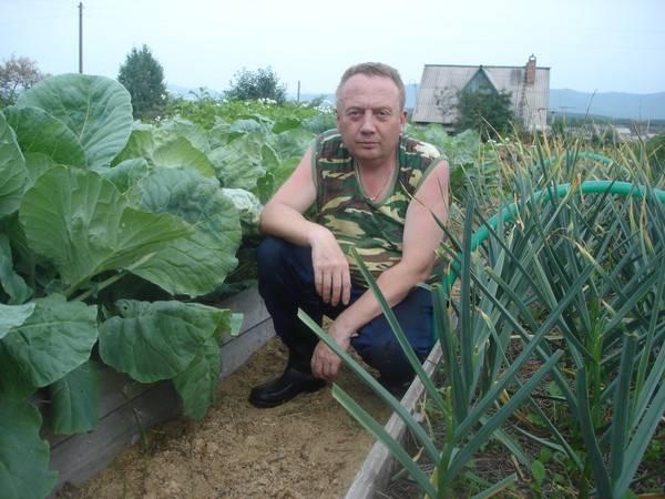Высокие грядки игоря лядова. раскроем секрет урожайности