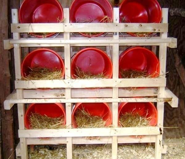 Гнезда для кур (39 фото): как их сделать своими руками для несушек? размеры, чертежи и оригинальные идеи для правильного изготовления самодельных гнезд