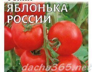 Томат «яблонька россии». характеристика и описание сорта