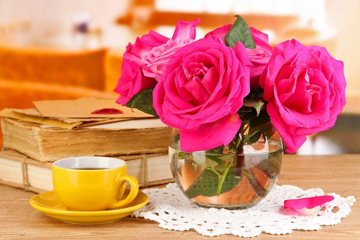 Как сохранить розы срезанные в вазе дольше – все способы