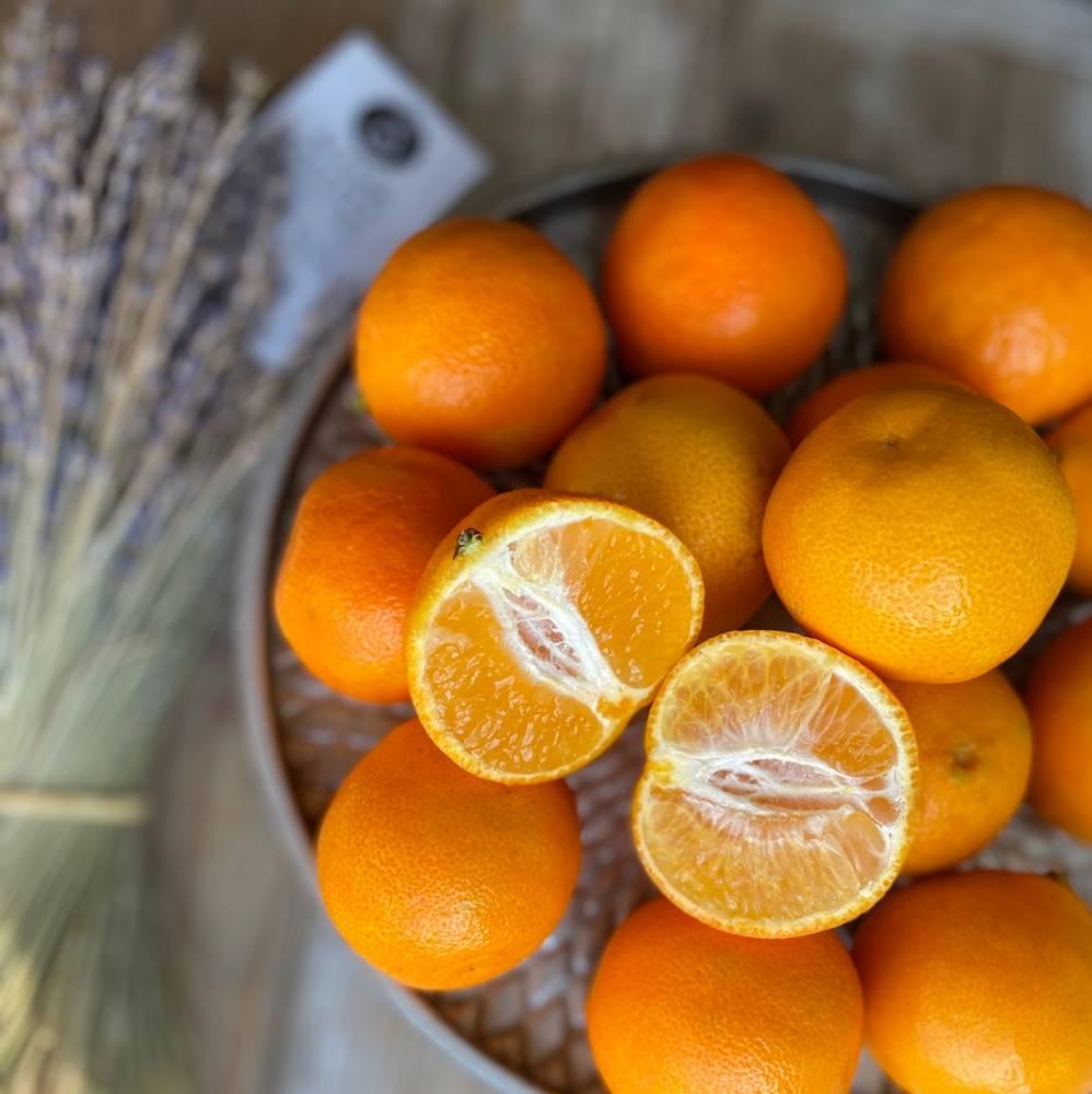 Как выбрать мандарины: сладкие, без косточек, вкусные?