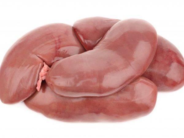 Полезны ли свиные почки