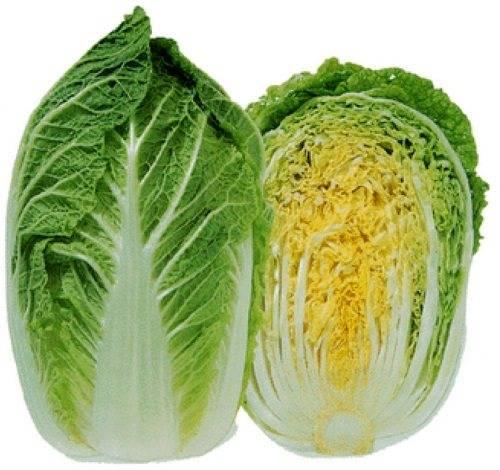 Пекинская капуста: калорийность продукта и полезные свойства