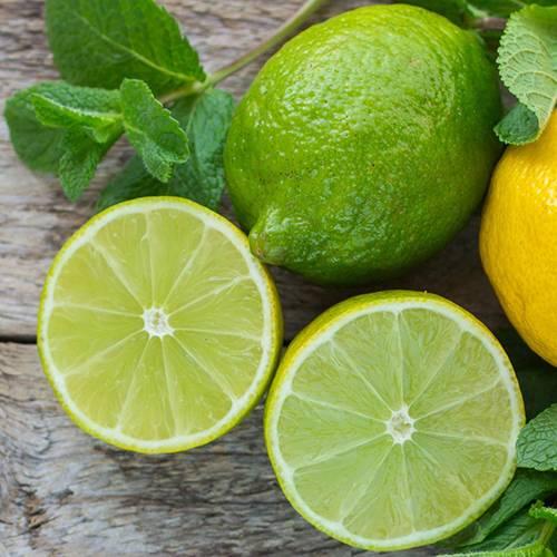 Дикий лимон понцирус — что это, чем полезен, как употреблять в пищу, что можно с ним приготовить? как вырастить дикий лимон понцирус в средней полосе россии?