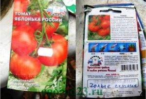 Любимец отечественных дачников, самый неприхотливый в уходе и при этом высокоурожайный томат «яблонька россии»