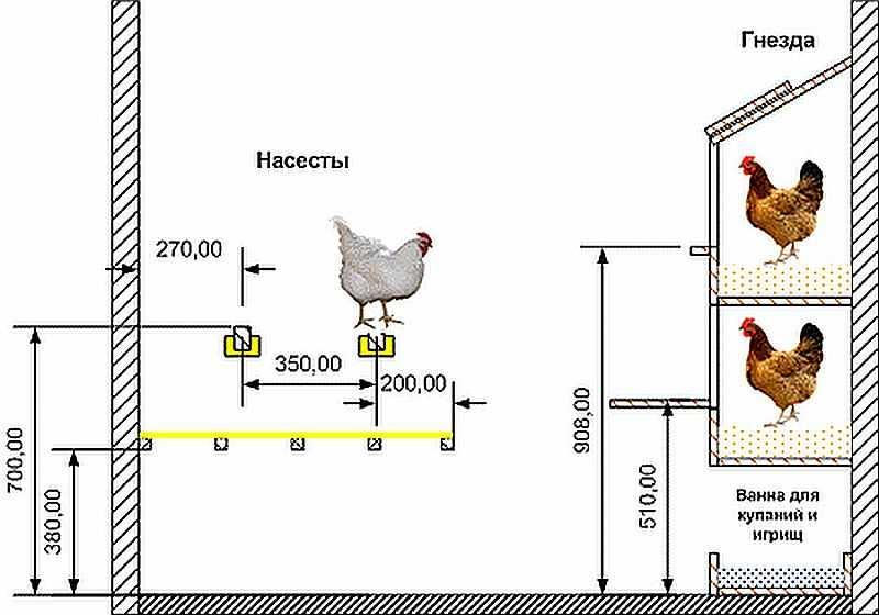 Гнёзда для кур-несушек: как сделать своими руками простые куриные домики и с яйцесборниками, их размеры