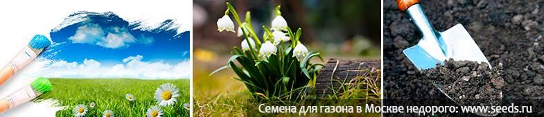 Правильная подготовка грядок с осени. особенности перекопки. внесение удобрений, известкование — ботаничка.ru