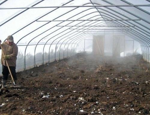 Подготовка теплиц и парников весной, как обеззаразить почву в теплице.