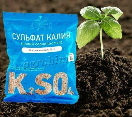 Cернокислый калий (сульфат калия): удобрение, применение