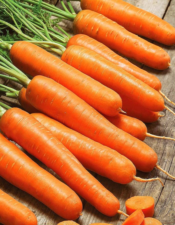 Лучшие сорта моркови для длительного хранения (крупные, ранние, сладкие и др.): список самых лучших для зимнего сохранения