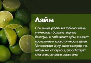 Лайм: сорта и гибриды для выращивания в домашних условиях, полезные свойства фрукта