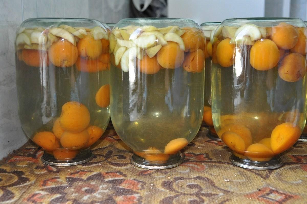 Компот из абрикосов на зиму: 13 простых рецептов с косточками и без с фото
