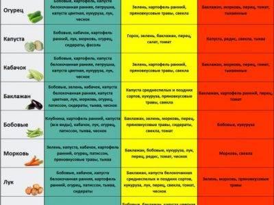 Схемы посадки моркови: расстояние между семенами и глубина заделки на грядке в открытом грунте, а также через какой интервал друг от друга их сеять весной и осенью? русский фермер