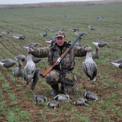 Весенняя охота на гуся: болото или поле? - охотничий портал