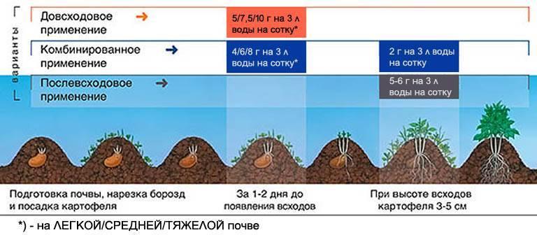 10 достоинств гербицида зенкор для мощного отпора сорнякам
