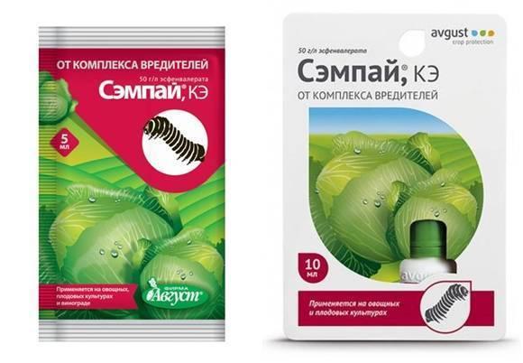 Применение народных средств для обработки капусты от вредителей
