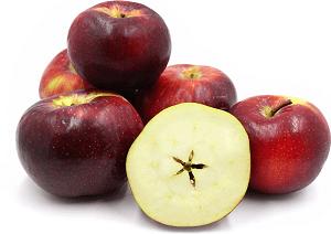 Описание популярных сортов яблонь, яблок   фото