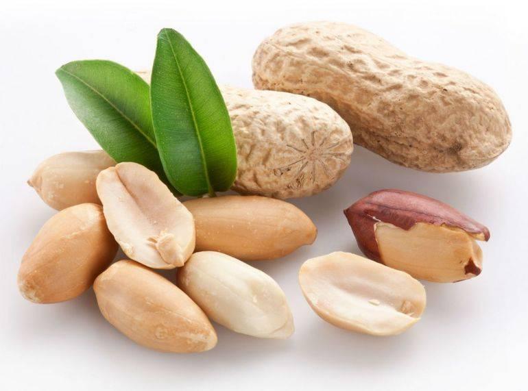Как вырастить арахис на даче в открытом грунте (на огороде) и в домашних условия, как правильно посадить земляной орех, как собирать, также выращивание из семян