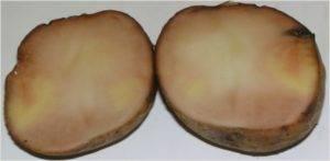 Почему картофель почернел внутри