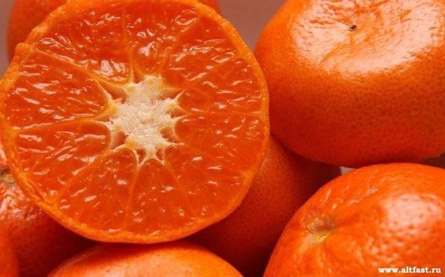 Клементины: что это такое, фото фрукта — selok.info