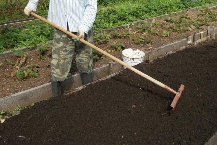 Подготовка грядок к зиме после сбора урожая: полезные советы