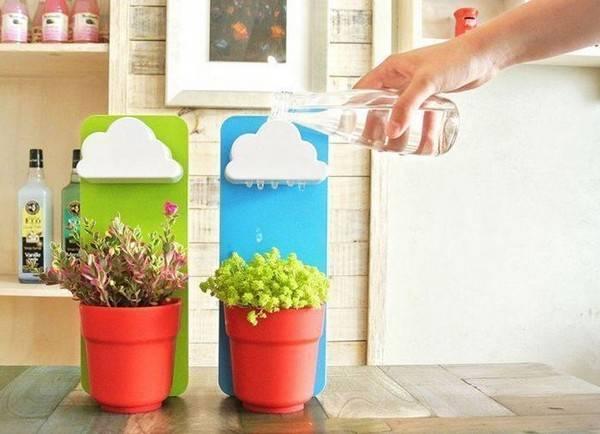 Автополив для комнатных растений - советы и рекомендации