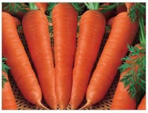 Какие витамины содержатся в моркови: таблица