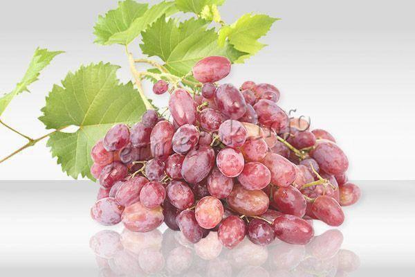 Велес — вкуснейший и крупный виноград с ранним сроком созревания