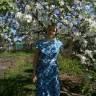 Яблоня башкирский красавец: фото и описание сорта, отзывы
