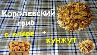 Королевский шампиньон (agaricus bisporus), двуспоровый или коричневый: фото, описание, как готовить и чем отличается гриб
