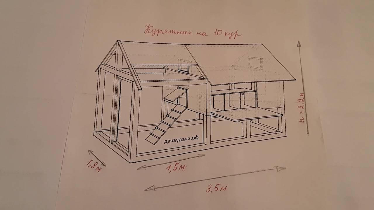 Курятник на 10 кур своими руками (53 фото): как поэтапно построить сооружение на 10 голов по чертежу с размерами, проект устройства мини-загона внутри